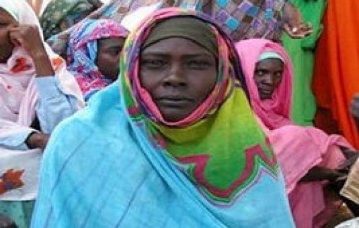 Arab Reform Initiative - Peace and Constitution in the Sudan