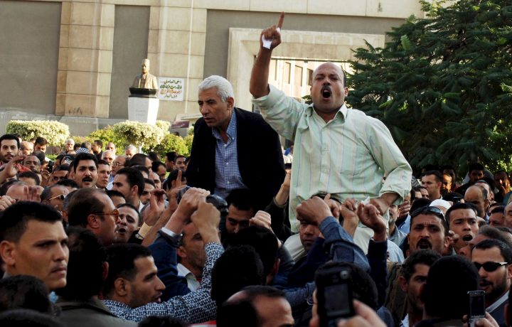 Arab Reform Initiative - The Human Rights Movement and Contentious Politics in Egypt (2004-2014)